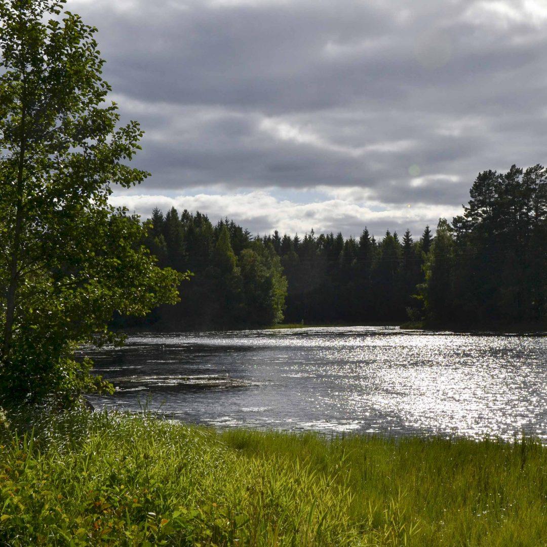See umgeben von Wiese und Wald. Inklusive Sommerreise des Indiwi Berlins.