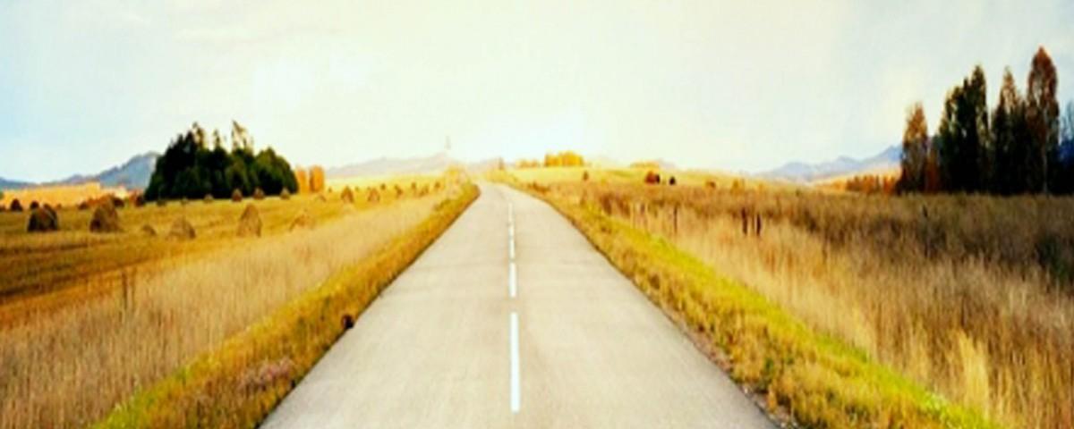 Lange Straße, rechts und links Felder.